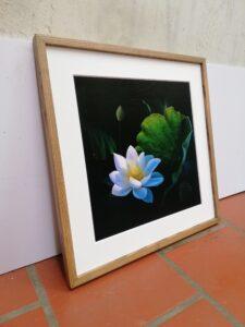 """Lotus"" Fint-Art Print"